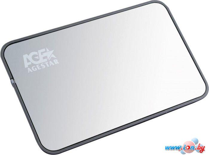 Бокс для жесткого диска AgeStar 3UB2A8 Silver в Могилёве