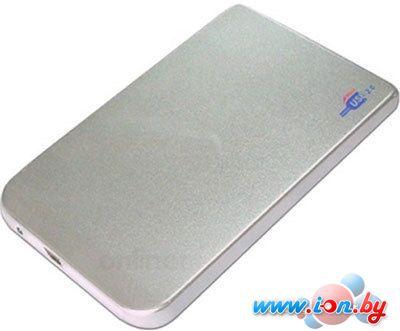 Бокс для жесткого диска AgeStar SUB2O1 Silver в Могилёве
