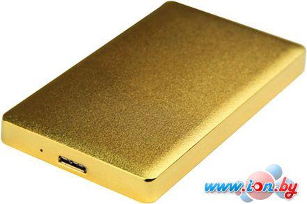 Бокс для жесткого диска AgeStar 31UB2A15 Gold в Могилёве