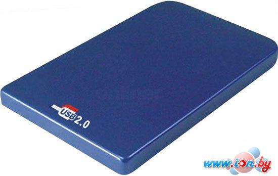 Бокс для жесткого диска AgeStar SUB2O1 Blue в Могилёве