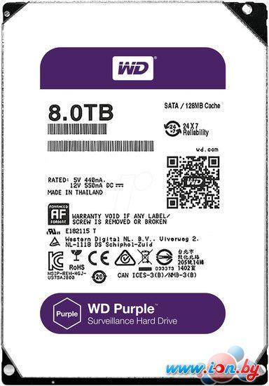 Жесткий диск WD Purple 8TB [WD80PUZX] в Могилёве