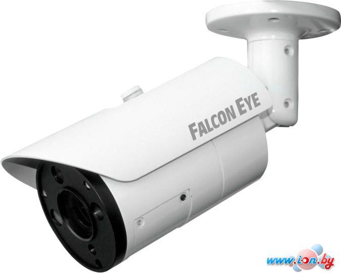 IP-камера Falcon Eye FE-IPC-BL200PV в Могилёве