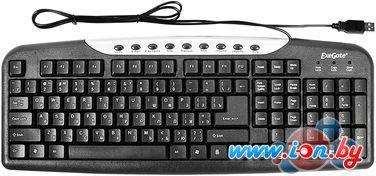Клавиатура ExeGate LY-339M в Могилёве