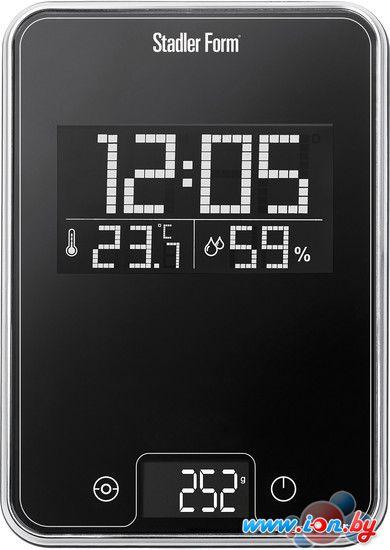 Кухонные весы Stadler Form Scale One Black (SFL.0011) в Могилёве