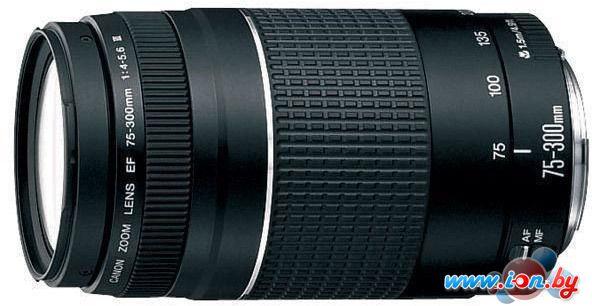 Объектив Canon EF 75-300mm f/4-5.6 III в Могилёве