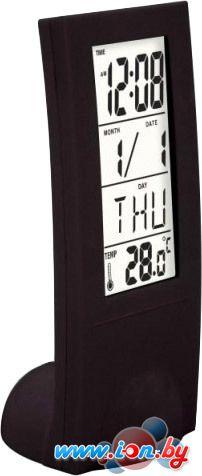 Комнатный термометр Digion PTS2098BL в Могилёве