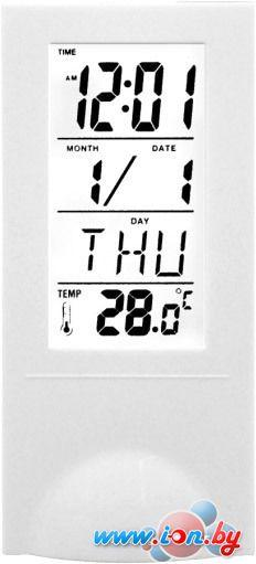 Комнатный термометр Digion PTS2098WH в Могилёве