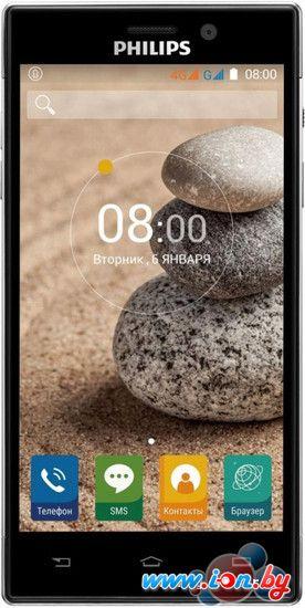 Смартфон Philips Xenium V787 [CTV787BK] в Могилёве