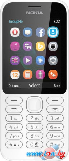 Мобильный телефон Nokia 222 Dual SIM White в Могилёве