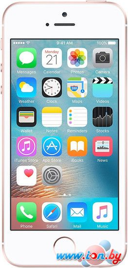 Смартфон Apple iPhone SE 64GB Rose Gold в Могилёве
