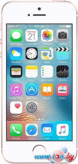 Смартфон Apple iPhone SE 64GB Rose Gold в Могилёве