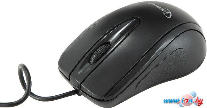 Мышь Gembird MUSOPTI8-800U в Могилёве