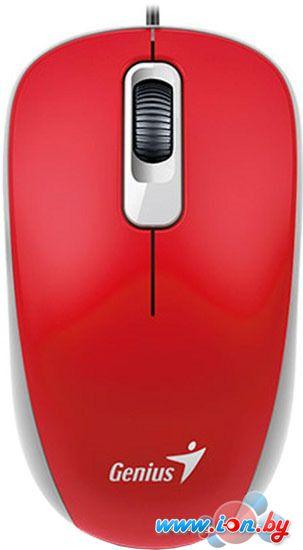 Мышь Genius DX-110 (красный) в Могилёве