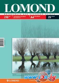 Фотобумага Lomond Глянцевая/Матовая двухсторонняя А4 210 г/кв.м. 25 л (0102047) в Могилёве