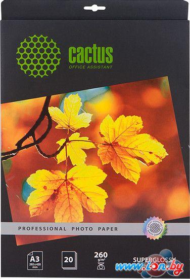 Фотобумага CACTUS Суперглянцевая A3 260 г/кв.м. 20 листов (CS-HGA326020) в Могилёве