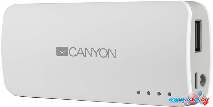 Портативное зарядное устройство Canyon CNE-CPB44 в Могилёве