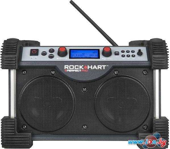 Радиоприемник PerfectPro RockHart в Могилёве
