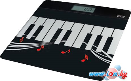 Напольные весы Mystery MES-1812 в Могилёве