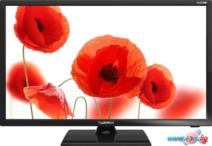 Телевизор TELEFUNKEN TF-LED19S30 в Могилёве