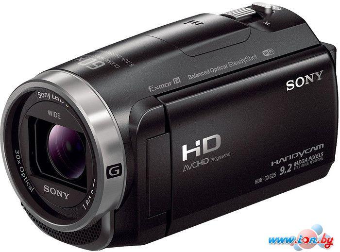 Видеокамера Sony HDR-CX625 в Могилёве