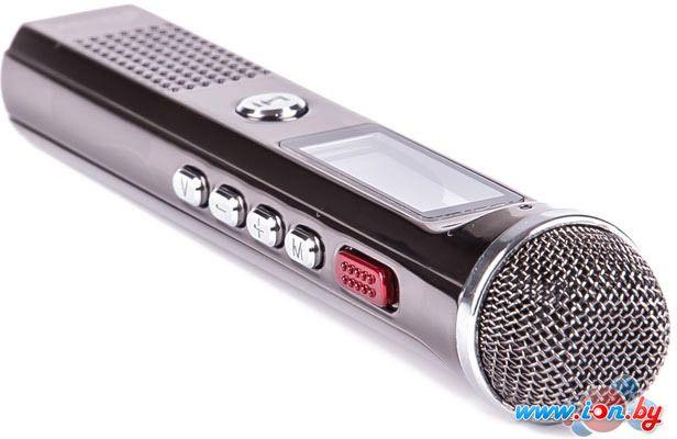 Диктофон Ritmix RR-150 8Gb в Могилёве
