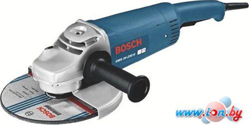 Угловая шлифмашина Bosch GWS 24-230 H Professional (0601884103) в Могилёве