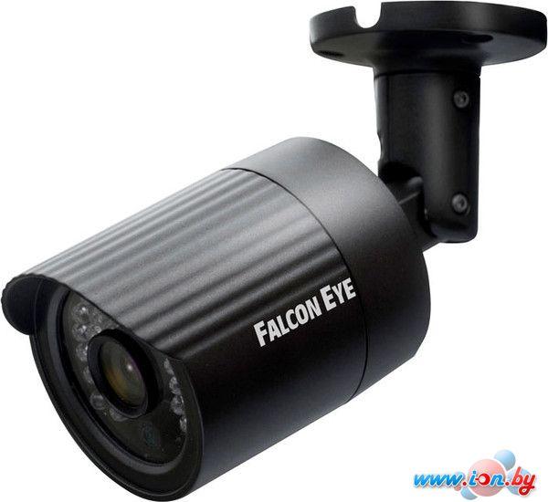 IP-камера Falcon Eye FE-BL100P в Могилёве
