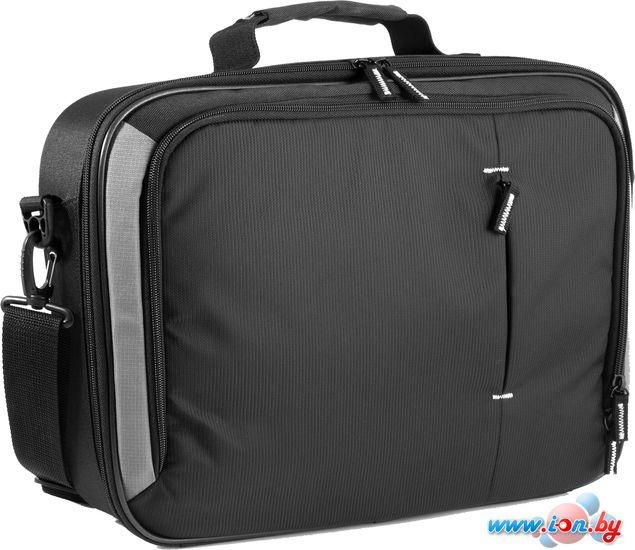 Сумка для ноутбука Defender Biz bag 15-16 (26095) в Могилёве