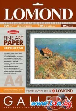 Фотобумага Lomond Coarse-Grainy Natural White Archive A4 200 г/кв.м. (0912241) в Могилёве