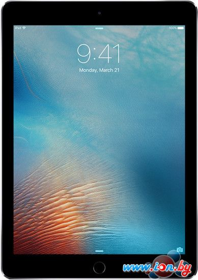 Планшет Apple iPad Pro 9.7 256GB Space Gray в Могилёве