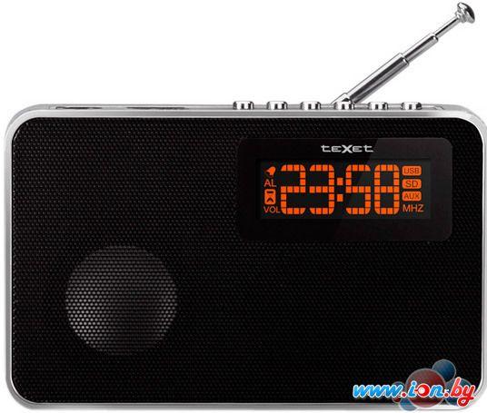 Портативная аудиосистема TeXet TR-3002 в Могилёве