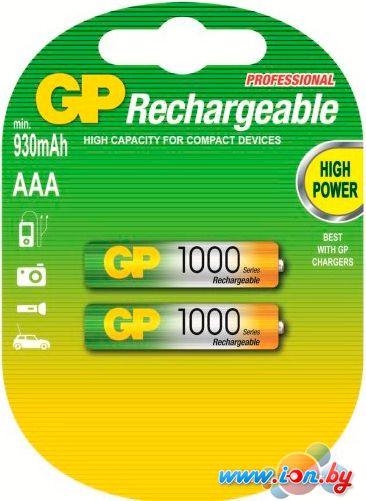 Аккумуляторы GP AAA 1000mAh 2 шт. [100AAAHC] в Могилёве
