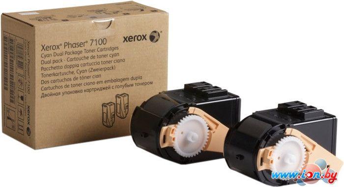 Картридж для принтера Xerox 106R02609 в Могилёве