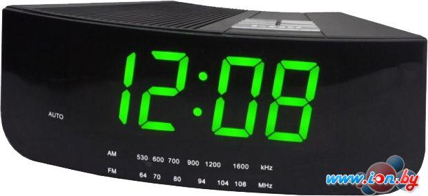 Радиочасы Digion PTCR2618G в Могилёве