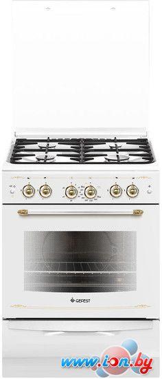 Кухонная плита GEFEST 6100-02 0081 в Могилёве
