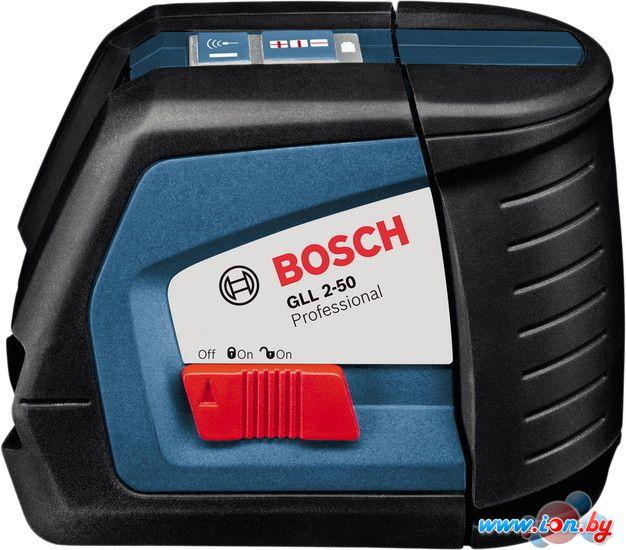 Лазерный нивелир Bosch GLL 2-50 (с держателем BM 1) [0601063108] в Могилёве