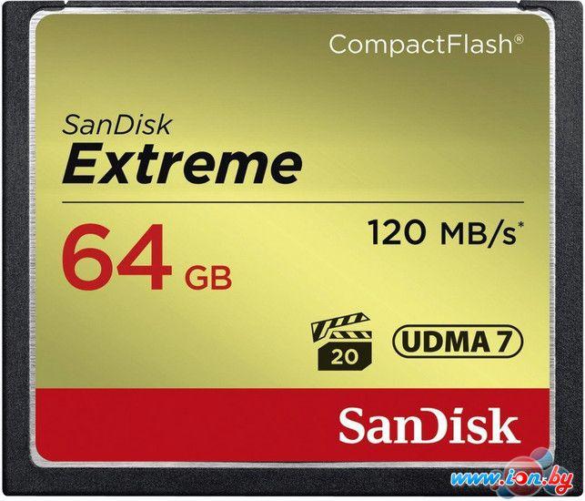 Карта памяти SanDisk Extreme CompactFlash 128GB [SDCFXSB-128G-G46] в Могилёве