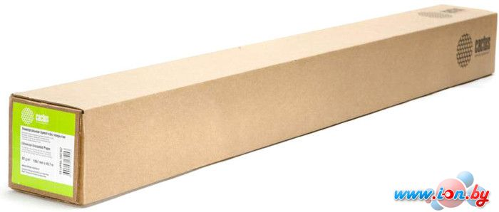 Офисная бумага CACTUS белый 1067 мм x 45.7 м [CS-LFP80-1067457] в Могилёве