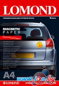 Бумага с магнитным слоем Lomond магнитная глянцевая А3 660 г/кв.м. 2 листа (2020347) в Могилёве