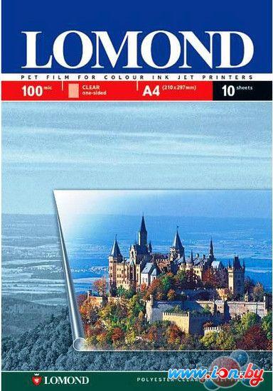 Пленка Lomond Pet Ink Jet Film A4 100мкм 10л (0708411) в Могилёве