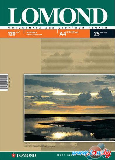 Фотобумага Lomond Односторонняя матовая A4 120г/м2 25л (0102030) в Могилёве
