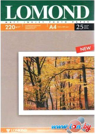 Фотобумага Lomond матовая двухсторонняя A4 220 г/кв.м. 25 листов [0102148] в Могилёве