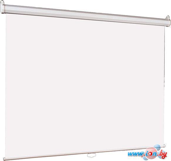 Проекционный экран Lumien Eco Picture (LEP-100101) в Могилёве