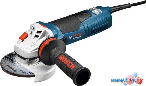 Угловая шлифмашина Bosch GWS 15-125 Inox Professional (060179X008) в Могилёве