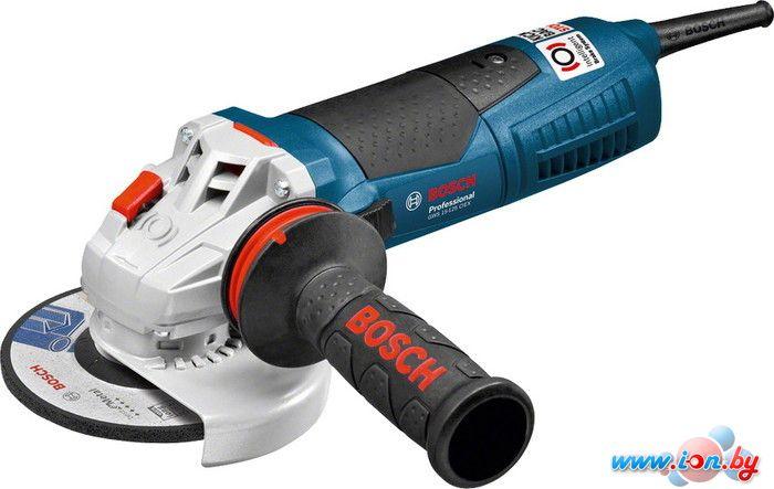 Угловая шлифмашина Bosch GWS 15-125 CIEX Professional [0601796102] в Могилёве