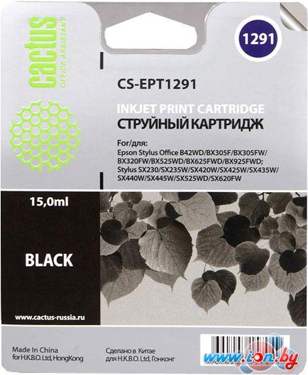 Картридж для принтера CACTUS CS-EPT1291 в Могилёве
