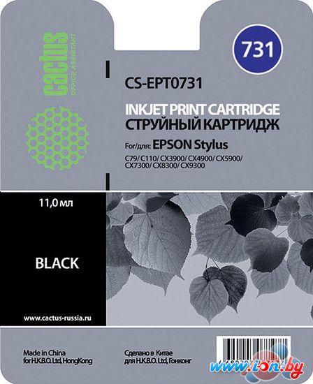 Картридж для принтера CACTUS CS-EPT0731 в Могилёве