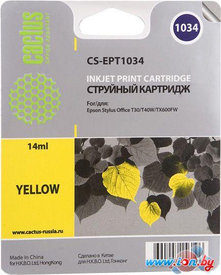 Картридж для принтера CACTUS CS-EPT1034 в Могилёве