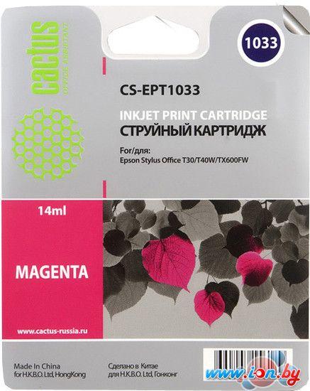 Картридж для принтера CACTUS CS-EPT1033 в Могилёве