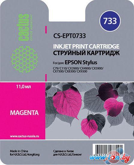 Картридж для принтера CACTUS CS-EPT0733 в Могилёве